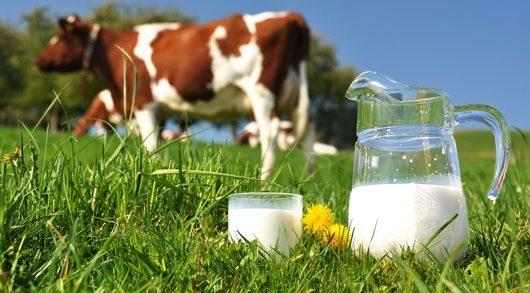 βιολογικό γάλα
